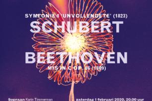 Winterse romantiek met Schubert en Beethoven